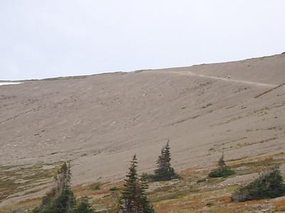 2012 Hurricane Ridge
