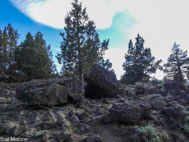 05-18-2021 Picture Rock Petroglyphs-9.jpg