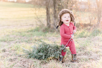 Reed Christmas Photos in Hummelstown