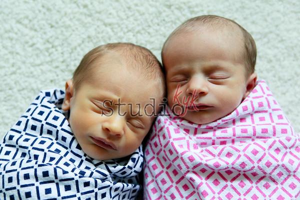 twins 2014