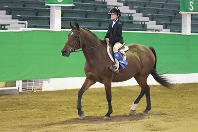 167 - Beginner's Walk/Trot Hunt Seat Equitation 10 & under