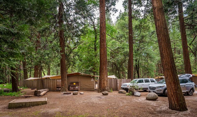 Yosemite -120616-004.jpg