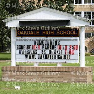 Homecoming - Oakdale High School 2014 & 2019