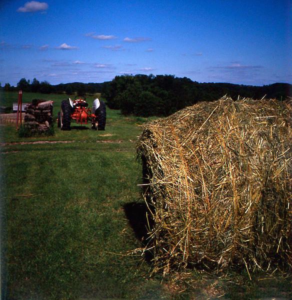 Farm_1993_01.jpg
