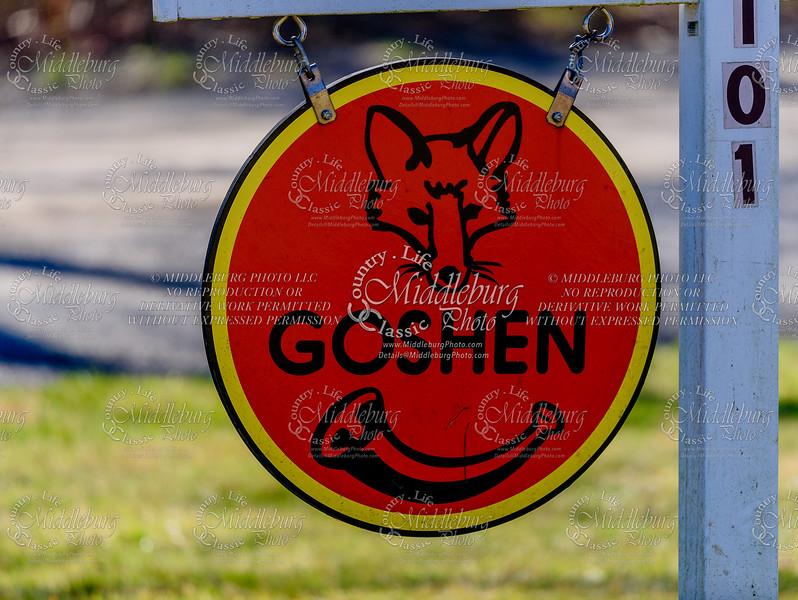 Goshen Hounds Side Saddle Meet 3.4.2018