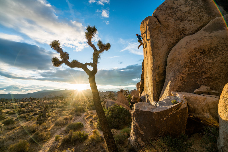 1616 was a trip done for Mountain Hardware, the purpose of the shoot was to get a few catalogue and add images of Ethan Pringle bouldering in Joshua Tree.   ATHLETES: ETHAN PRINGLE, RYAN ROBINSON