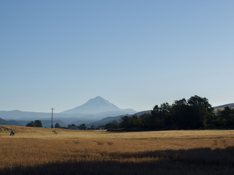 The west side of Mt Hood as seen from Dufur, OR