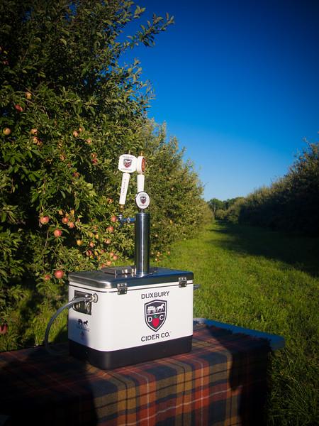 duxbury cider in field 2.jpg