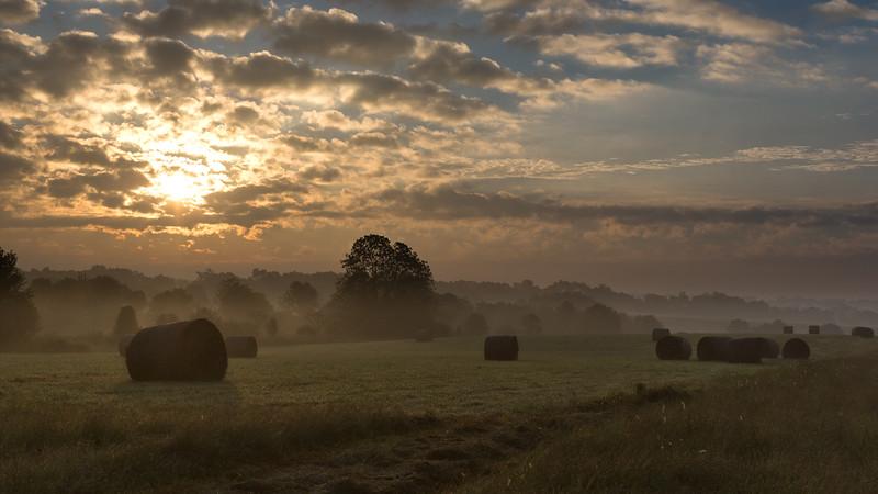 Mereworth morning scene 9.16.18.