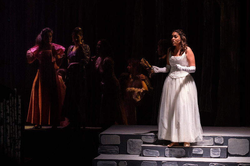 2018-03 Into the Woods Performance 1301.jpg