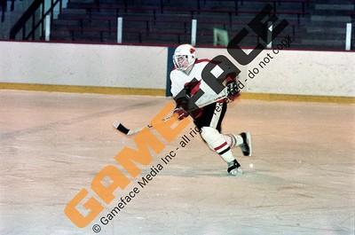 Wesleyan Men's Hockey