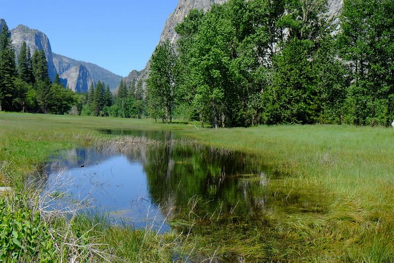 California Day 7 Yosemite 06-01-2017 147.JPG
