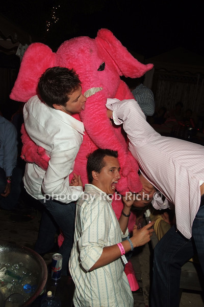 Pink Elephant attack photo by Rob Rich © 2008 516-676-3939 robwayne1@aol.com