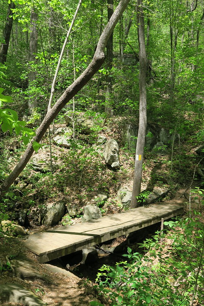 Pinnacle Mountain Trail - 2,000'