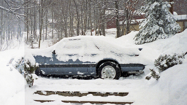 March 3, 1994:  Winter refuses to go away quietly, Part 2 .  .  .