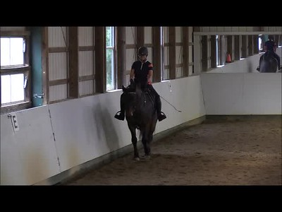 TSRC 2018-11-02 Wildfire Farm Video
