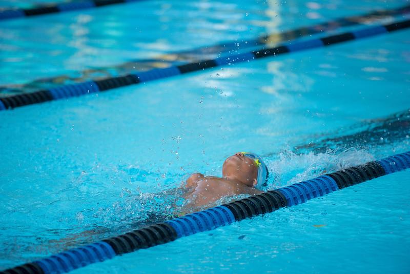 lcs_swimming_kevkramerphoto-221.jpg