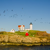 Flock Over Nubble Light