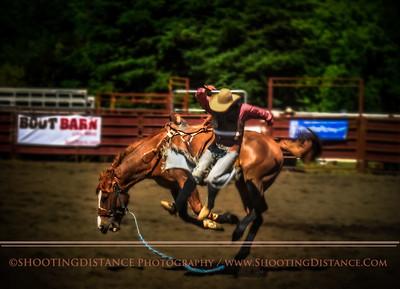 2010 saddle bronc