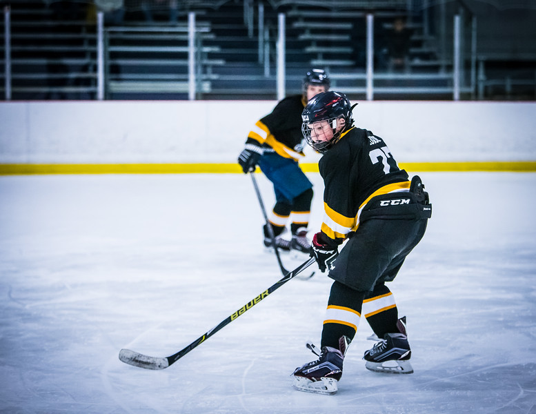 Bruins2-111.jpg
