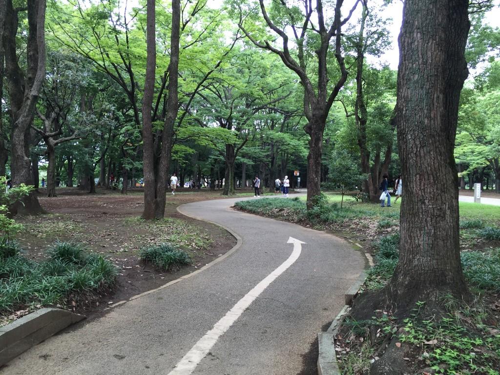 Park paths