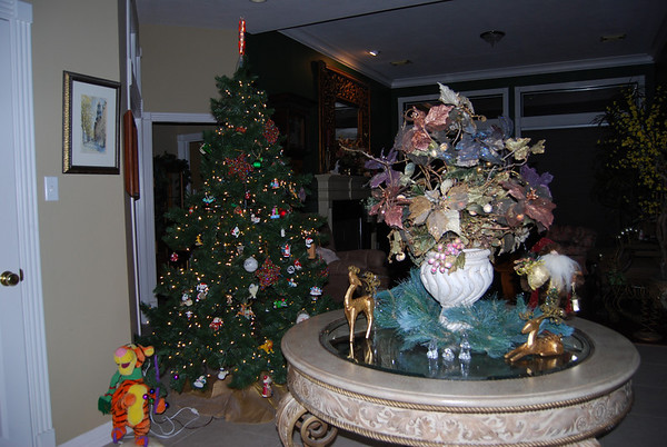 Christmas 2010 & Harrison 21