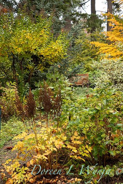 Dietrick fall garden_2078.jpg