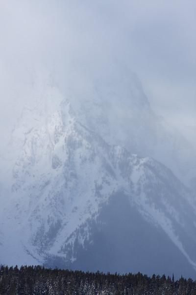 mtn fog1.jpg