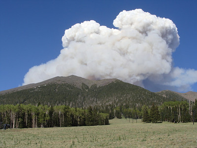 Mt Humphreys (and fire), 6-20-10