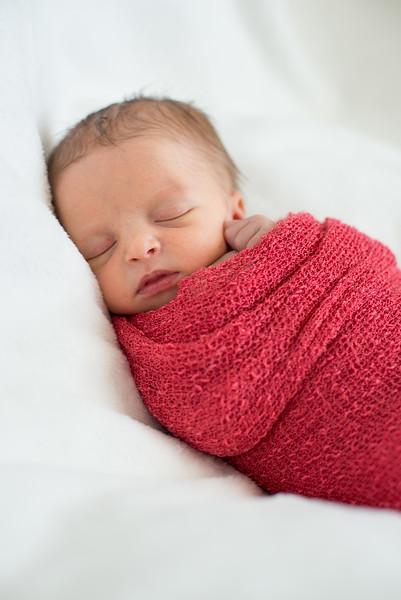 Raleigh's Newborn
