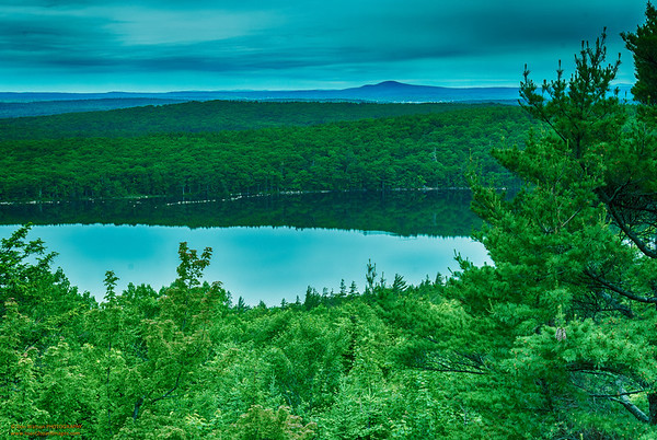 """Pond Reflections in Blue and Green"" Acadia National Park, Maine"