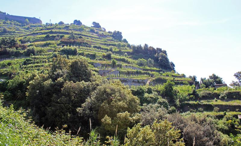 Italy-Cinque-Terre-Hiking-Blue-Path-Trail-05.JPG