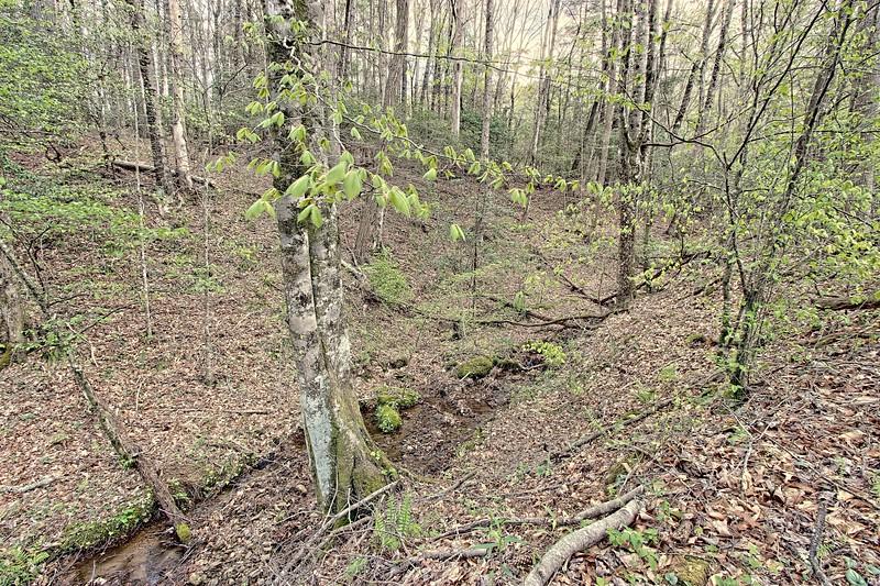 165 Deer Valley Rd (5).jpg
