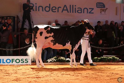 HolsteinVision 2018