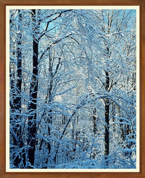 JW 0698 ice snow frost WIDE FRAME.jpg