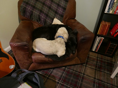 Chair Sharing