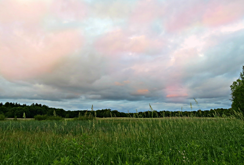 PINK AND BLUE ABOVE THE FIELDS