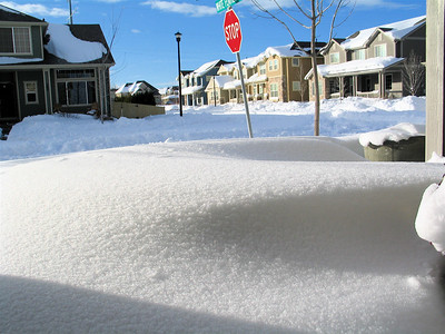 Snow - December 20th 2006