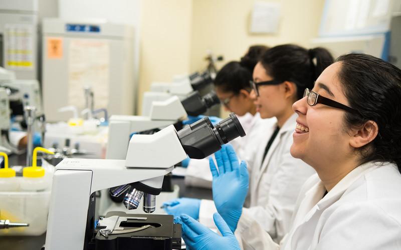 Selina Dominguez looks through microscope to examine cells in Hematology.