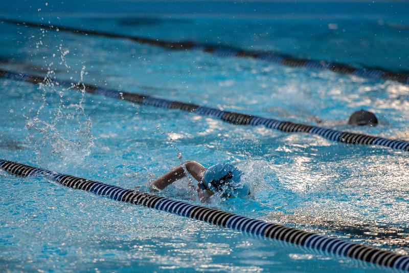 lcs_swimming_kevkramerphoto-728.jpg