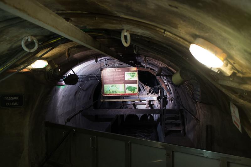 sewer_DSCF1514.jpg