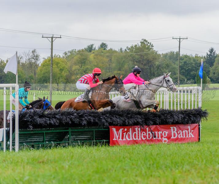 2016 Virginia Fall Races