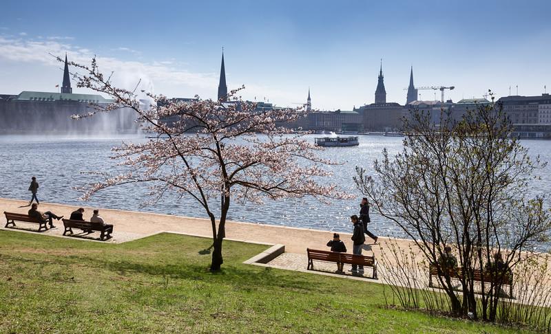 Hamburg Binnenalster im Frühling blauer Himmel Menschen Alsterdampfer Kirschblüte