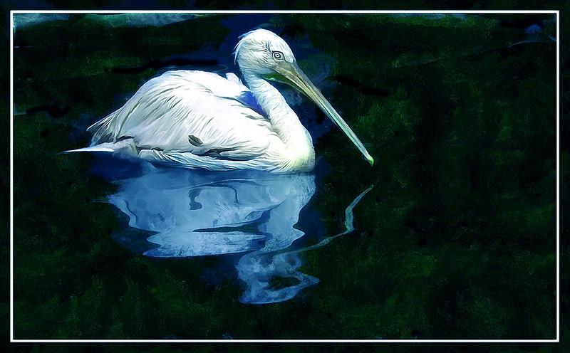 07-03732-GER-VogelPark_DAP_Portraitist4.jpg