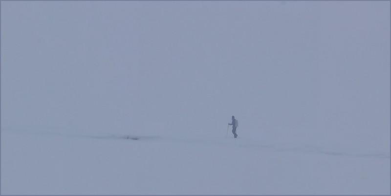 Neale Jenks.A winter stroll in Yellowstone.1.AS.jpg