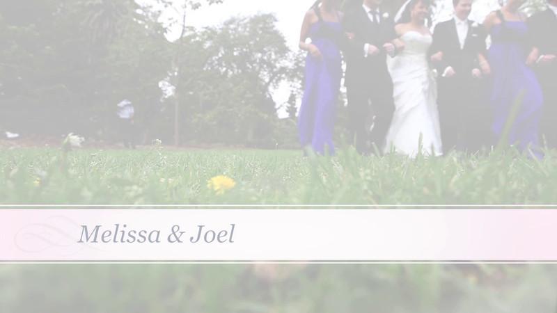 Melissa & Joel Videostory