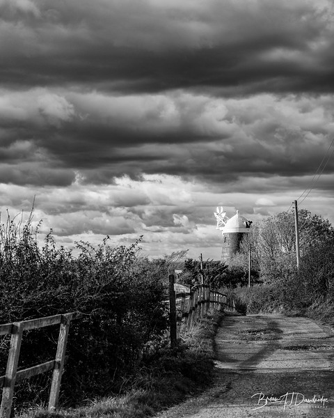 South Downs Way Walk-3745-Edit-Edit.jpg