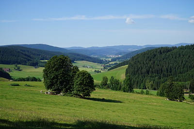 2017.07.06  Germany > Switzerland