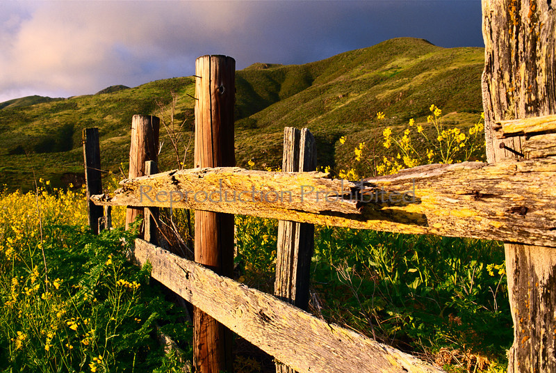 Fenced Out Big Sur, CA