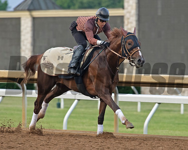 Belmont Stakes Works